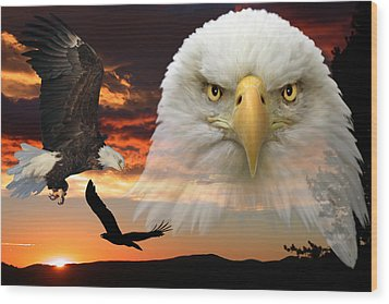 Wood Print featuring the photograph The Bald Eagle by Shane Bechler