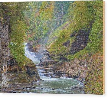 The Bashful Lower Falls Wood Print