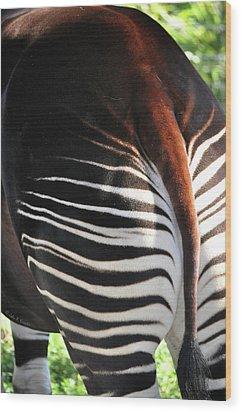 The Beautiful Okapi 03 Wood Print