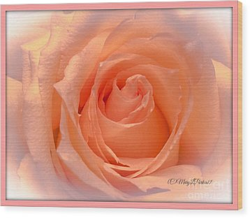 The  Beauty Of A Rose  Copyright Mary Lee Parker 17,  Wood Print