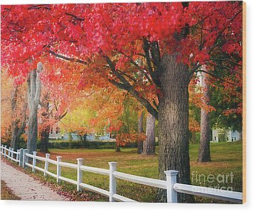 The Beauty Of Autumn In New England Wood Print