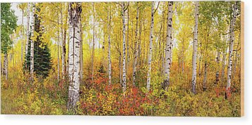Wood Print featuring the photograph The Beauty Of The Autumn Forest by Tim Reaves