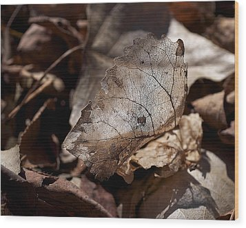 Wood Print featuring the photograph The Beauty Of The End by Rona Black
