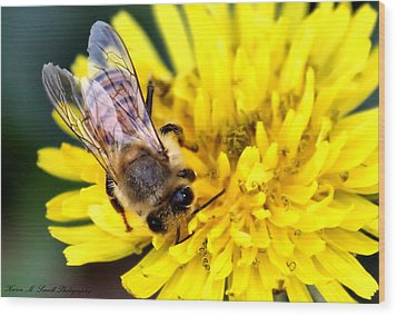 The Bee Wood Print by Karen Scovill