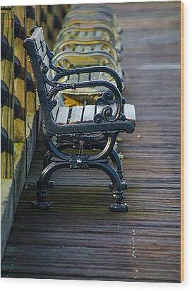 The Bench Wood Print by Mary Ward