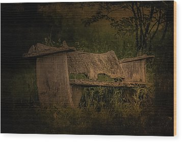 Wood Print featuring the photograph The Bench by Ryan Photography