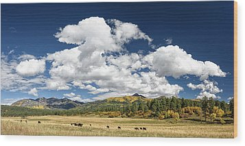 The Big Picture Wood Print by Cathy Neth