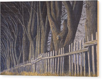 The Bird House Wood Print by Jerry McElroy