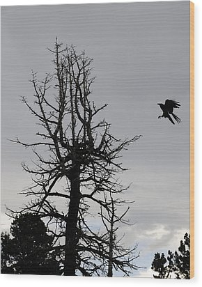 The Bird Is Coming Wood Print