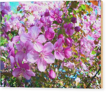 The Blossoms Of Spring Wood Print
