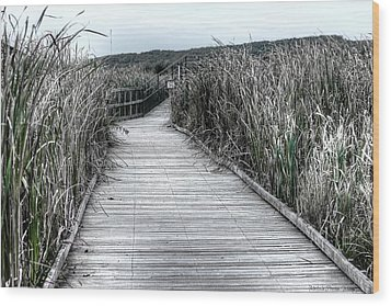Wood Print featuring the photograph The Boardwalk by Michaela Preston