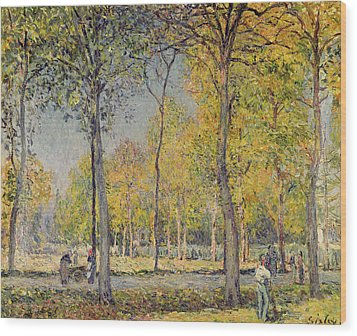 The Bois De Boulogne Wood Print by Alfred Sisley