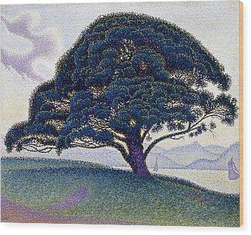 The Bonaventure Pine  Wood Print by Paul Signac
