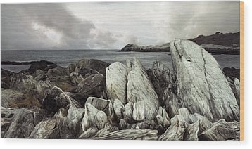 Wood Print featuring the photograph The Boulder Breach by Robin-Lee Vieira