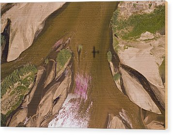The Braided River Rovuma In The Dry Wood Print by Michael Fay