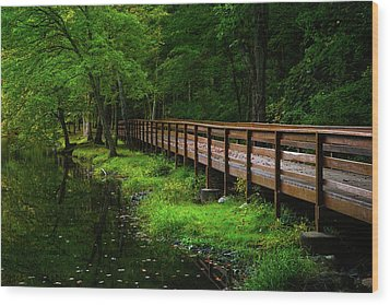 Wood Print featuring the photograph The Bridge At Wolfe Park by Karol Livote