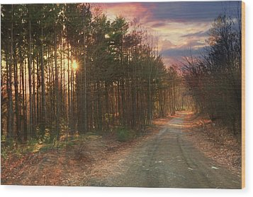 Wood Print featuring the photograph The Brown Path Before Me by Lori Deiter