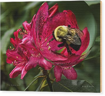 The Bumble Bee Wood Print by Mark Allen