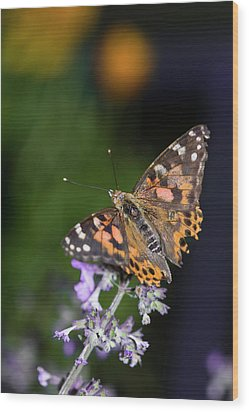 Wood Print featuring the photograph The Butterfly Effect by Alex Lapidus