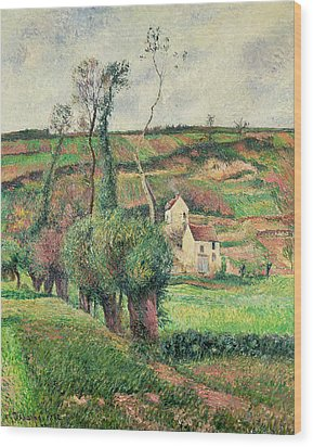 The Cabbage Slopes Wood Print by Camille Pissarro