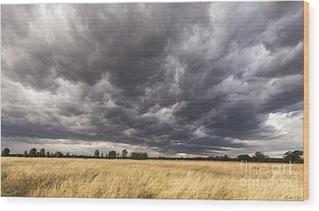 The Calm Before The Storm Wood Print by Linda Lees