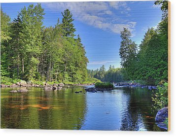 Wood Print featuring the photograph The Calm Below Buttermilk Falls by David Patterson