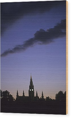 The Capitol Buildings Silhouetted Wood Print by Taylor S. Kennedy