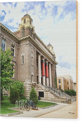 The Carnegie Library Wood Print by Debra Millet
