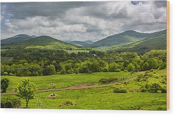 Wood Print featuring the photograph The Catskill Mountains by Paula Porterfield-Izzo