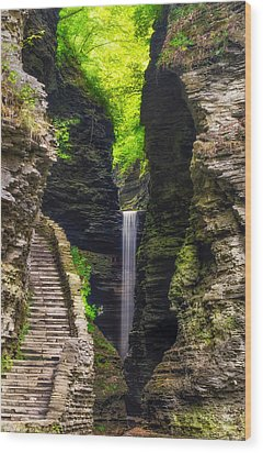The Central Cascade Wood Print by Mark Papke