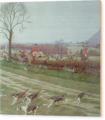 The Cheshire Away From Tattenhall Wood Print by Cecil Charles Windsor Aldin