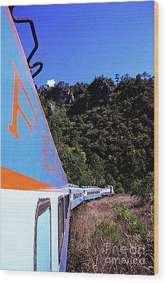 The Chihuahua-pacific Railway Travelling Through The Copper Canyon Wood Print by Sami Sarkis