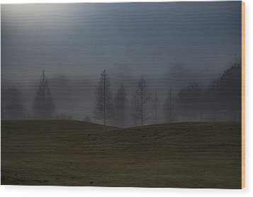 Wood Print featuring the photograph The Chosen by Annette Berglund