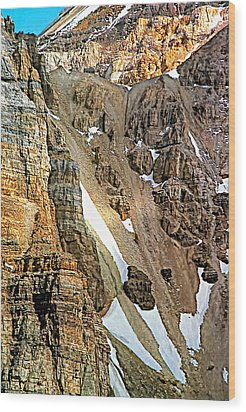 The Climb To Abbot's Hut Wood Print by Steve Harrington