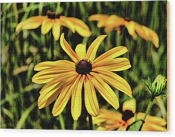Wood Print featuring the photograph The Colors And Details by Monte Stevens