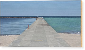 Wood Print featuring the photograph The Colors Of Lake Michigan by Fran Riley