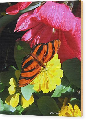 The Colors Of Summer Wood Print by Trina Prenzi