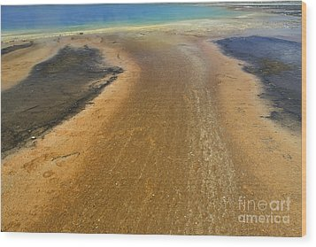 The Colors Of Yellowstone Wood Print by Stan and Anne Foster