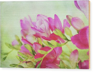 Wood Print featuring the photograph Colour Full Freesia by Connie Handscomb
