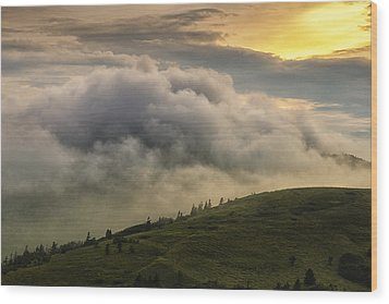 Summer Storm - Roan Mountain Wood Print