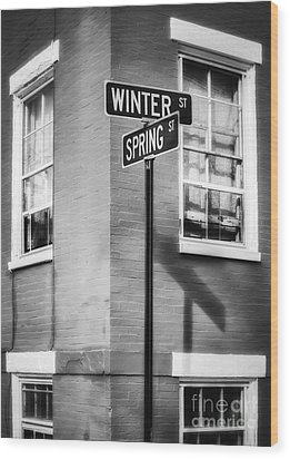 The Corner Of Winter And Spring Bw Wood Print