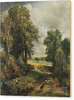 The Cornfield Wood Print by John Constable
