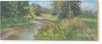The Creek At 1302 Wood Print by Terri  Meyer