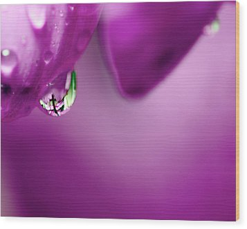 The Cross In Reflective Purple Water Drop Wood Print
