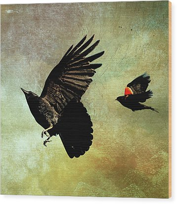 The Crow And The Blackbird Wood Print by Peggy Collins