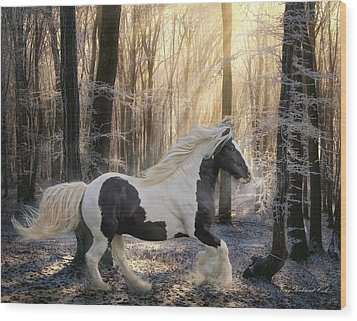 The Crystal Morning Wood Print by Terry Kirkland Cook