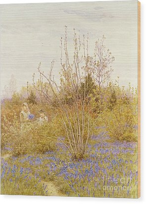 The Cuckoo Wood Print by Helen Allingham