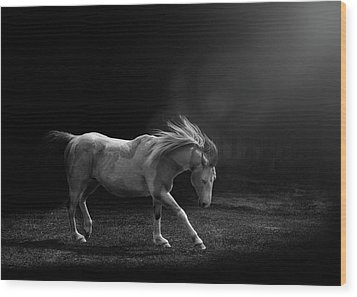 Wood Print featuring the photograph The Dance by Debby Herold
