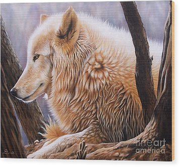 The Daystar Wood Print by Sandi Baker