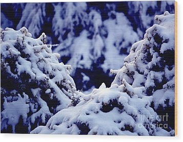 Wood Print featuring the photograph The Deep Blue - Winter Wonderland In Switzerland by Susanne Van Hulst